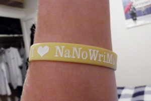 I Love NaNoWriMo